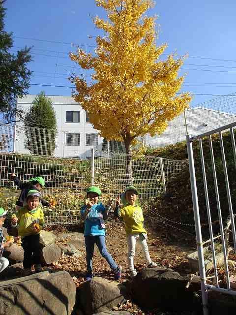 http://www.kinder.tohoku-gakuin.ac.jp/blog/content/171121-2_2.jpg